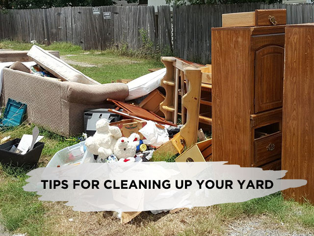 Tips for Cleaning Up Your Yard
